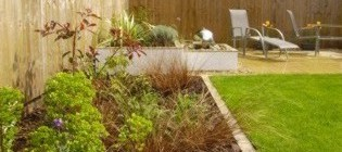 Planted border in modern urban garden - Bebington, Wirral