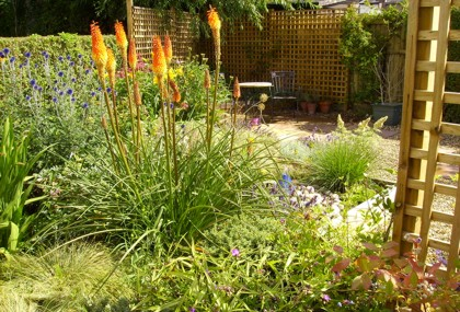 Raised bed with vibrant planting - Cheshire